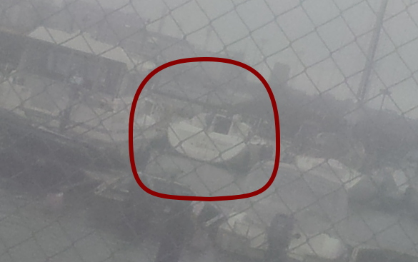 Punaraitainen pikku firsti nähty pajalahdessa siltojenalitusmoodissa